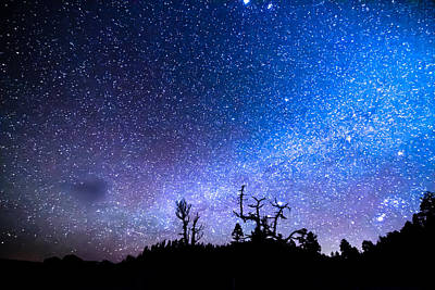 Photograph - Cosmic Kind Of Night by James BO  Insogna