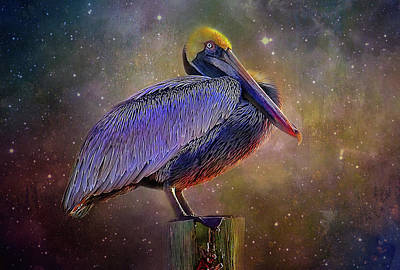 Photograph - Cosmic Pelican by HH Photography of Florida