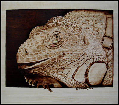 Pyrography Pyrography - Cosmo by Jo Schwartz