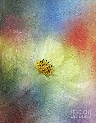 Photograph - Cosmos In Textured Pastels By Kaye Menner by Kaye Menner