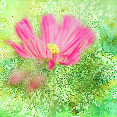 Cosmos On Green Art Print