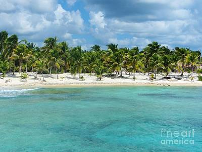 Photograph - Costa Maya, Mexico by Tim Townsend