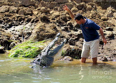 Photograph - Costa Rica Crocodile 4 by Randall Weidner