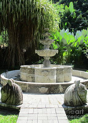 Photograph - Costa Rica Fountain by Randall Weidner