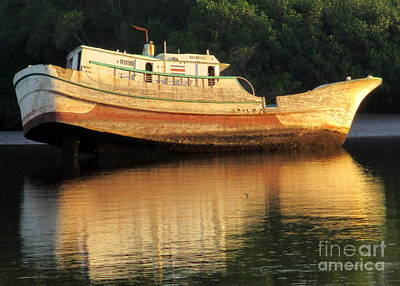 Photograph - Costa Rica Wreck 1 by Randall Weidner