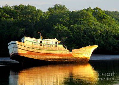 Photograph - Costa Rica Wreck 3 by Randall Weidner