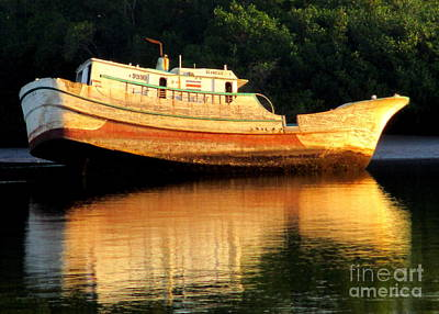 Photograph - Costa Rica Wreck 4 by Randall Weidner