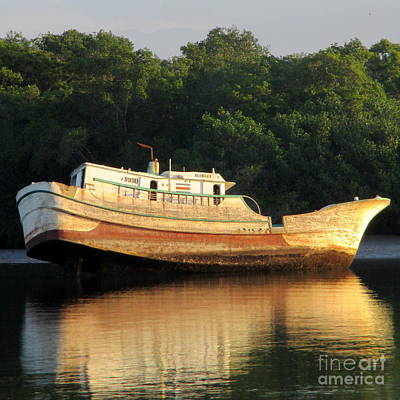 Photograph - Costa Rica Wreck by Randall Weidner