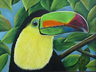 Costa Rican Toucan Art Print by Shirley C Checkos