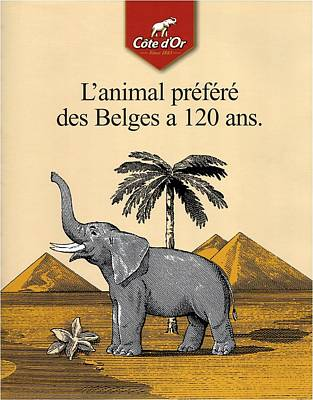 Royalty-Free and Rights-Managed Images - Cote dOr Chocolate - Belgian Chocolate - Elephant near the Egyptian Pyramids - Vintage Poster by Studio Grafiikka