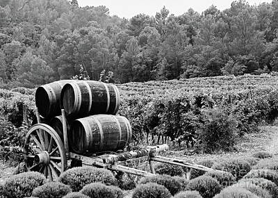 Photograph - Cotes Du Rhone Wine Country Provence France Fine Art Photograph Black And White Landscape Photo by Tim Hovde