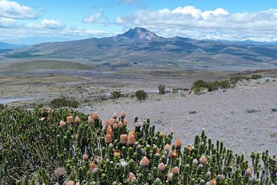 Photograph - Cotopaxi National Park Landscape by Cascade Colors