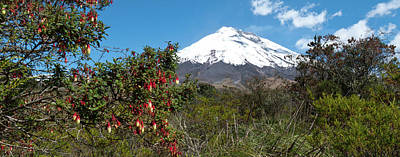 Photograph - Cotopaxi Panorama by Cascade Colors