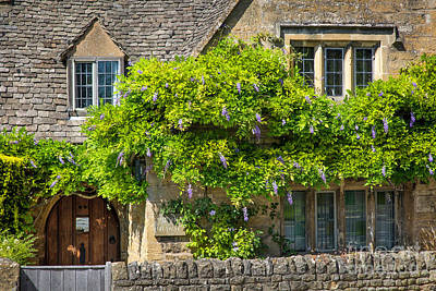 Photograph - Cotswolds Wysteria II by Brian Jannsen