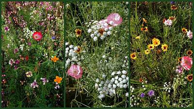 Photograph - Cottage Garden Collage 1 by Dorothy Berry-Lound