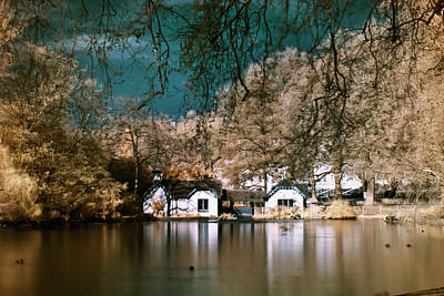 Photograph - Cottage On The Lake by Helga Novelli