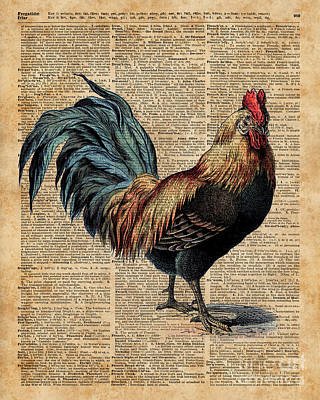 Tapestries - Textiles Digital Art - Cottage Rooster Illustration Vintage Dictionary Book Page by Jacob Kuch