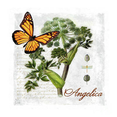 Cottage Style Angelica Herb Butterfly Botanical Illustration Art Print by Tina Lavoie