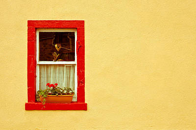 Cottage Window Art Print by Tom Gowanlock