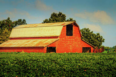 Photograph - Cotton Barn - Rural Landscape by Barry Jones