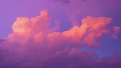 Photograph - Cotton Candy Clouds by Shawna Rowe