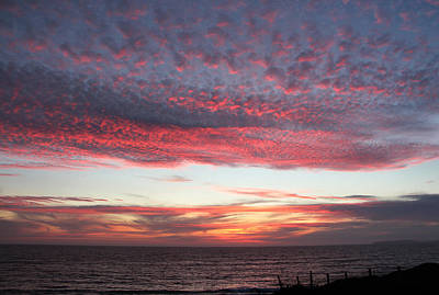 Bodega Bay Photograph - Cotton Candy Sky by Sierra Vance