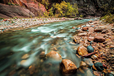 Deep River Photograph - Cotton Colors by Edgars Erglis
