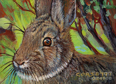 Painting - Cotton Tail Rabbit by Rob Corsetti