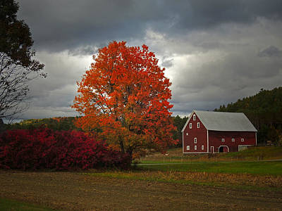 Photograph - Cottonstone Farm In Orford New Hampshire by Nancy Griswold
