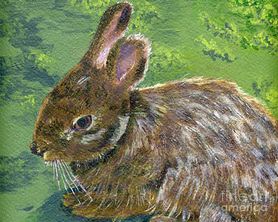Painting - Cottontail by Lynne Reichhart