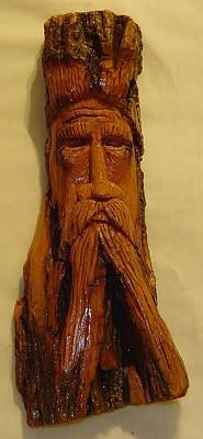 Cottonwood Bark  Wood Spirit Art Print by Russell Ellingsworth