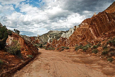 Photograph - Cottonwood Canyon Road by Alex Galkin