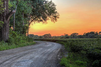 Cottonwood Sunset Art Print by JC Findley