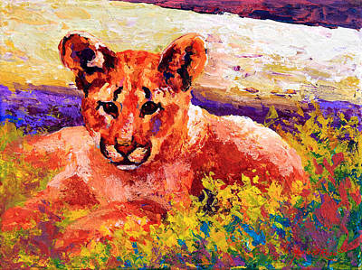 Wild Cat Painting - Cougar Cub by Marion Rose