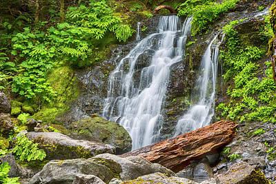 Creator Photograph - Cougar Falls - Mount Rainier National Park by Stephen Stookey