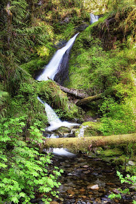 Photograph - Cougar Hollow Waterfall by Charlie Duncan