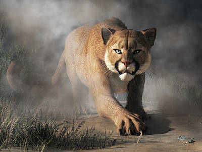 Cougar Is Gonna Get You Art Print