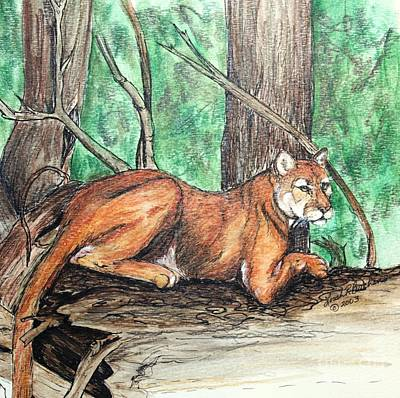 Painting - Cougar by Lorah Tout