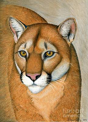Pastel - Cougar Portrait by Rebecca Wang