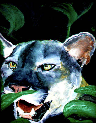 Cougar Art Print by Stan Hamilton