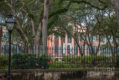 Photograph - College Of Charleston Cougar Town by Dale Powell