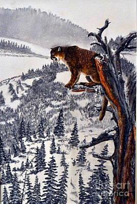 Cougar Watch Original