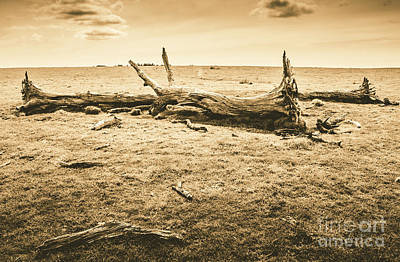 Photograph - Countrified Australia by Jorgo Photography - Wall Art Gallery