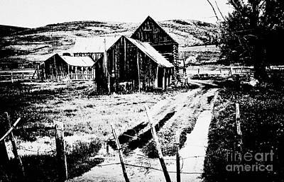 Country Barn 2 Original