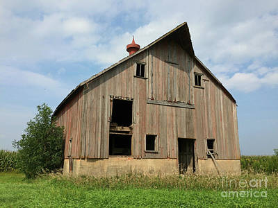 Photograph - Country Beauty by Kathy M Krause