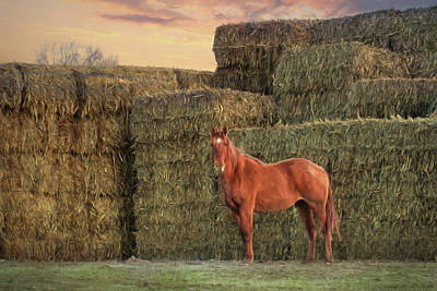 Bale Digital Art - Country Buffet by Lori Deiter