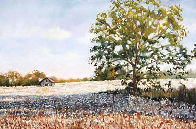 Cotton Field Painting - Country Cotton by Jennifer Levins