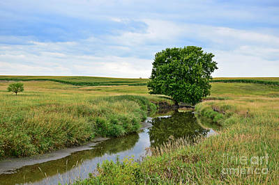 Photograph - Country Creek by Kathy M Krause