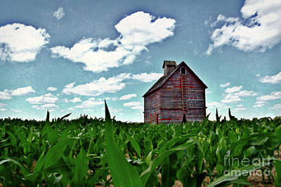 Photograph - Country Crib And Corn by Kathy M Krause