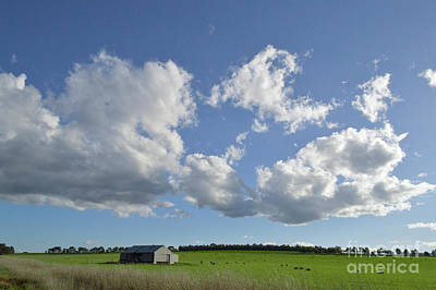 Photograph - Country Farm by Naomi Burgess
